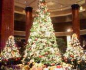 クリスマス目前