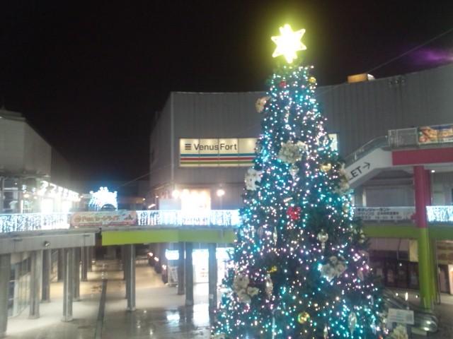 雨のクリスマスツリー